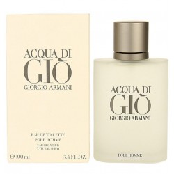 Giorgio Armani Acqua di Gio 100 ml for men - Tester perfume